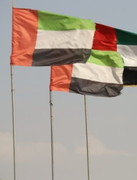 flags_standing